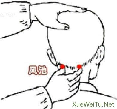 偏头痛怎么办?揉按5个穴位有效缓解