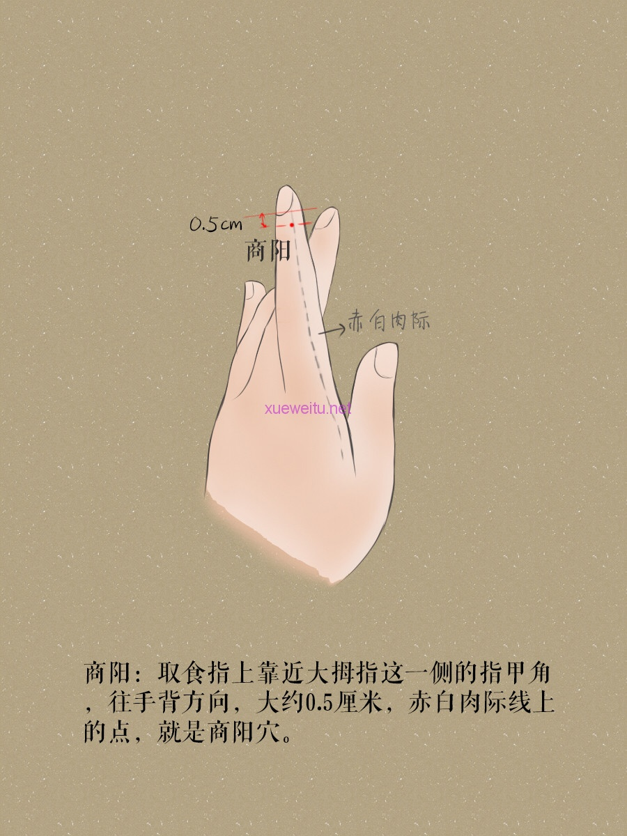 第十二章:手阳明大肠经穴位 - 灵天乾 - 天医宗文宣殿