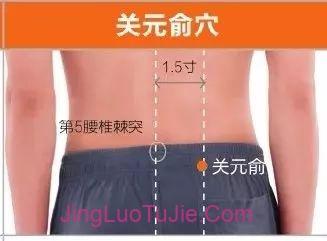 【经络图解】膀胱经67个高清穴位图