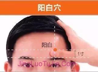 【经络图解】足少阳胆经45个高清穴位图